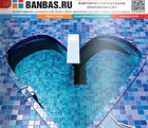 BANBAS 04/2013 | Microwell