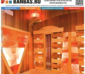 BANBAS 06/2013 | Microwell